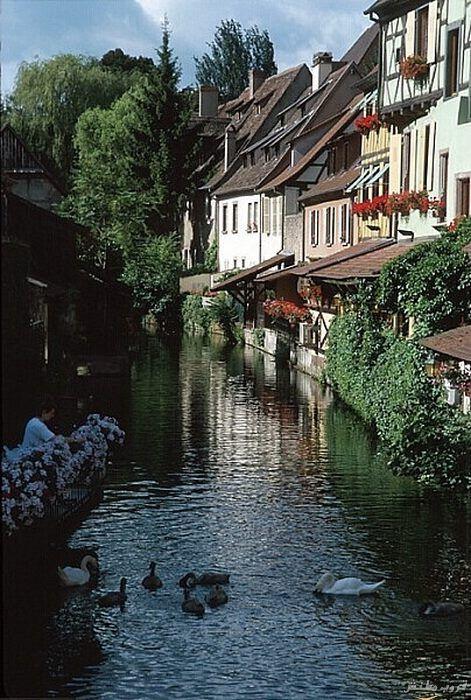 صور مدينة كولمار Colmar الفرنسية أجمل مدينة بالعالم بالصور 3649_dreambox-sat.com