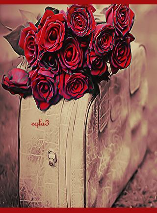 خلفيات رومانسية رائعة لعيد الحب 2013 ,خلفيات جالكسي عيد الحب 14-2-2013