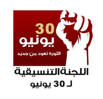 الخارجية المصرية تطلق حملة إعلامية في الاحتفالات بذكرى «30 يونيو» 102330