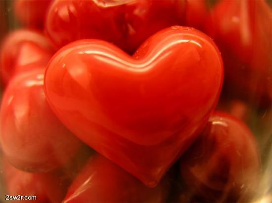 قلوب بداعة 2013, قلوب 2013,