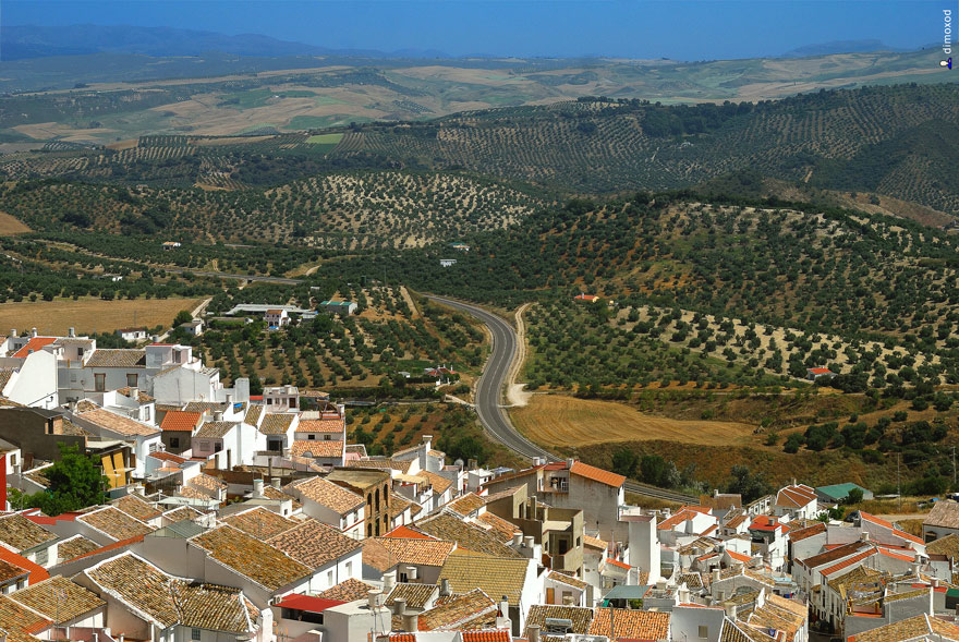 صور سياحة اسبانيا 2012  , قرية اوليفيرا في اسبانيا 2012