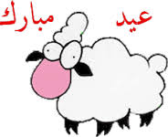 صور خروف العيد 2013 , صور خروف عيد الاضحى , أجمل خرفان العيد 2013