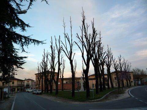 ��� ����� Mantova ���������