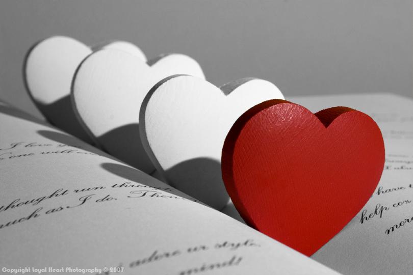جمال الحب بالصور 2013, جنون الحب بالصور 2013, صور رومانسية 2013