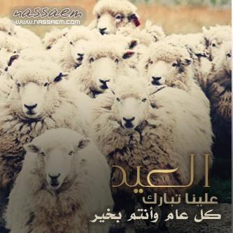 رمزيات بلاك بيري الاضحي المبارك