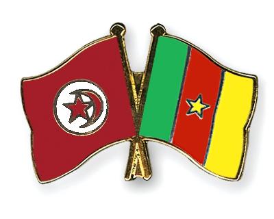 القنوات الناقلة - مباراة تونس والكاميرون اليوم الاحد 17-11-2013