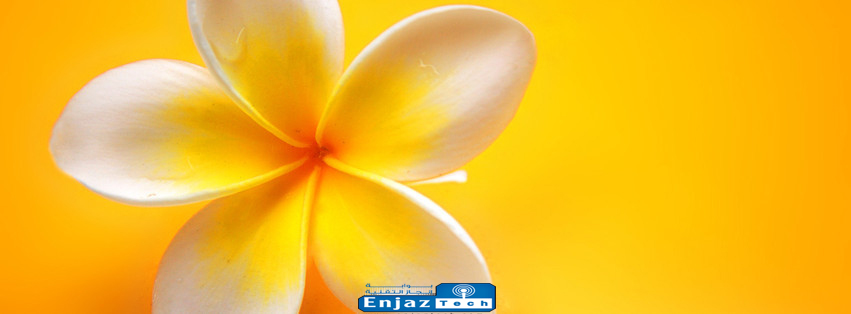��� ����� ���� ����� ��� 2014 - facebook flowers Cover