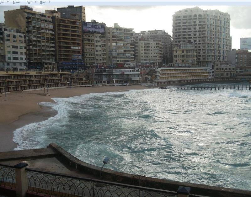 ������� �� ����� �������� 2014 Alexandria , ��� ����� ���������� 2014