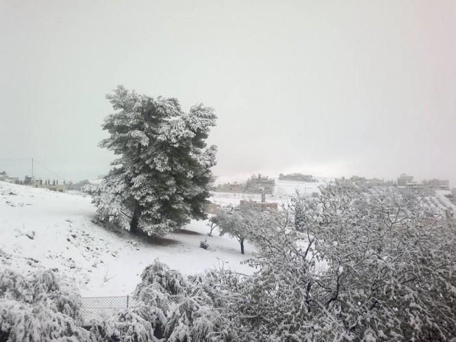 ������ ������ ����� ������ �� ������� ������ ����� 12/12/2013