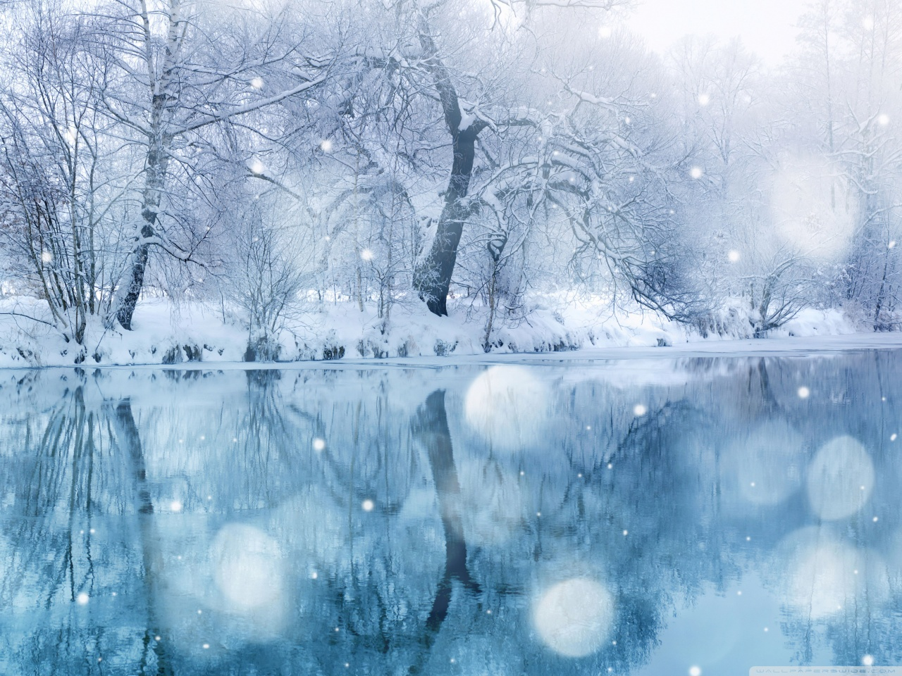 ��� ������ ���� ���� ������ 2014 , ��� ����� ������ ����� ������ 2014 snow wallpaper hd
