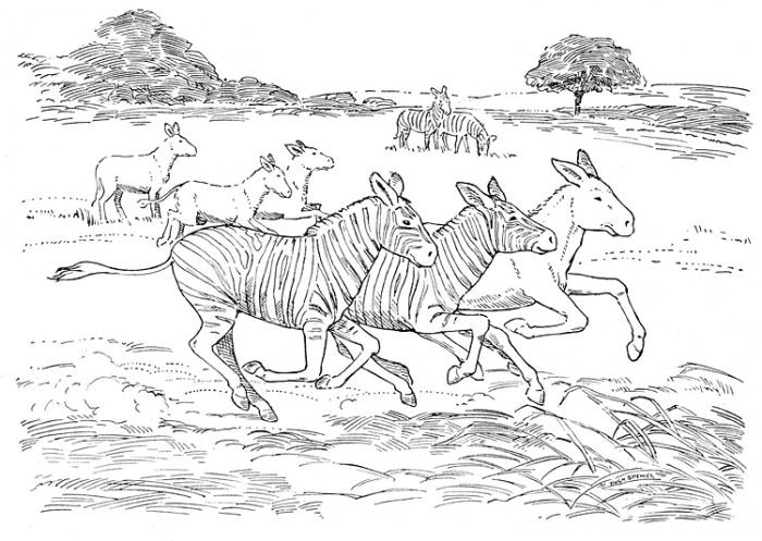 صور تلوين خيول 2014 ، صور رسومات خيول للأطفال جاهزة