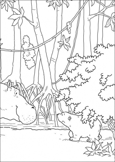 ��� ����� ����� 2014 � ��� ������ ����� ������� ����� ������� �������� Trees Coloring 2015
