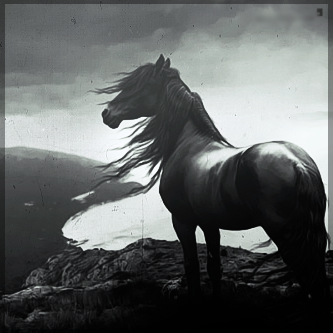 صور انستقرام خيول 2014 , احلى خلفيات خيول للانستقرام 2014