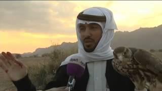 بالفيديو تعرف على فنادق الصقور في السعودية