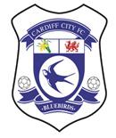 ���� ��� ������ ��������� ������ Swansea City vs Cardiff City ��� ChinaSat 10 at 110.5�E