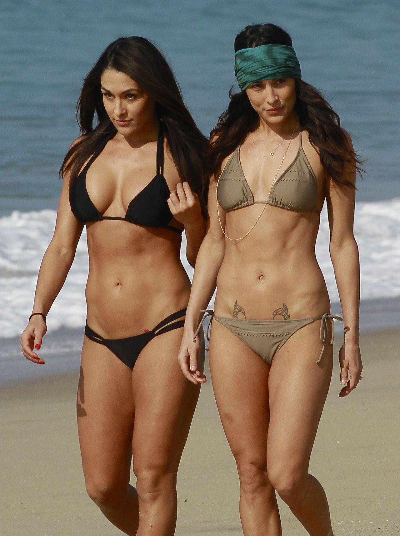 ��� Brie & Nikki Bella ��������� �� ��� ������ 2014