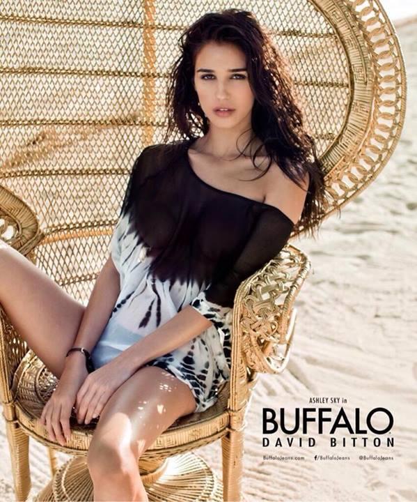 ��� ���� ���� �� ��� ������ ����� Buffalo David Bitton ���� 2014