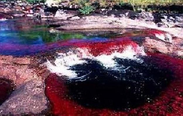 صور نهر ريو كانو كاستيلس في كولومبيا , معلومات عن نهر ريو كانو كاستيلس 2014