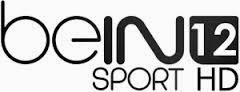 تردد قناة beIN Sports 12 HD على نايل سات بتاريخ اليوم 29-5-2014