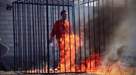 اعدام وحرق الطيار الأردني معاذ