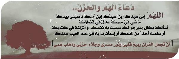 دعاء الهم والحزن وقضاء الحوائج 395116_dreambox-sat.com