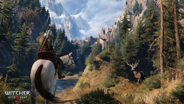 ����� �������� ���� The Witcher 3: Wild Hunt ������� 2015
