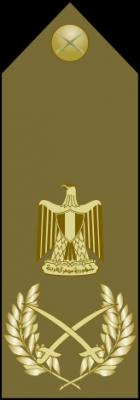 ������ ���� ��� ����� �������� �� ����� ������ 2015