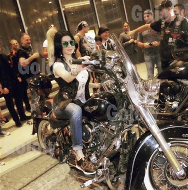 هيفاء وهبي احتفال Dubai Chabter