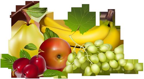 الفواكه والخضروات 26 حرف 5