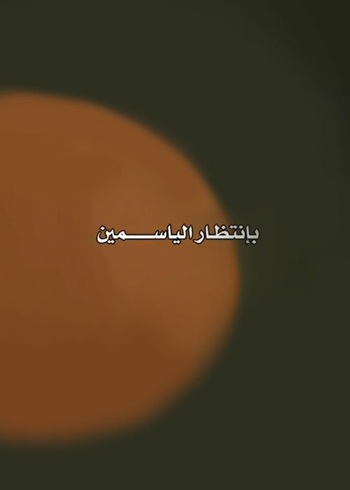 احداث وتفاصيل الحلقة الرابعة من مسلسل بانتظار الياسمين رمضان 2019