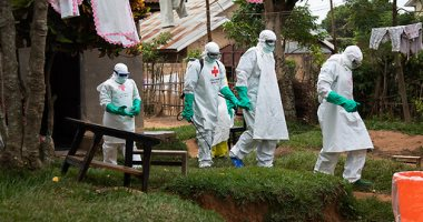 حقائق ومعلومات عن فيروس الإيبولا 2020 506580_dreambox-sat.com