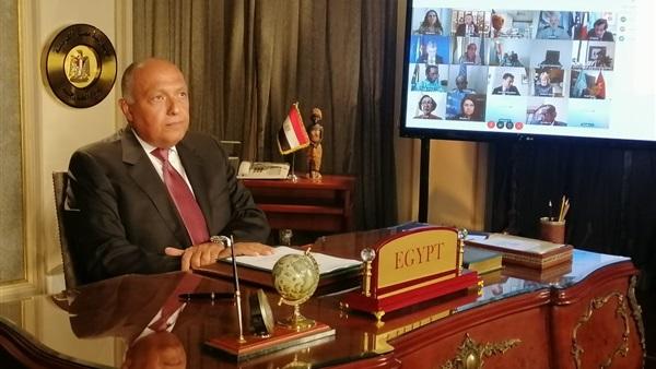 نص خطاب وزير الخارجية المصري في مجلس الأمن بخصوص سد النهضة