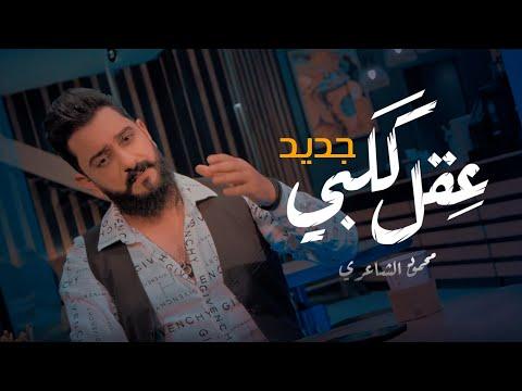 كلمات اغنية عقل قلبي محمود الشاعري