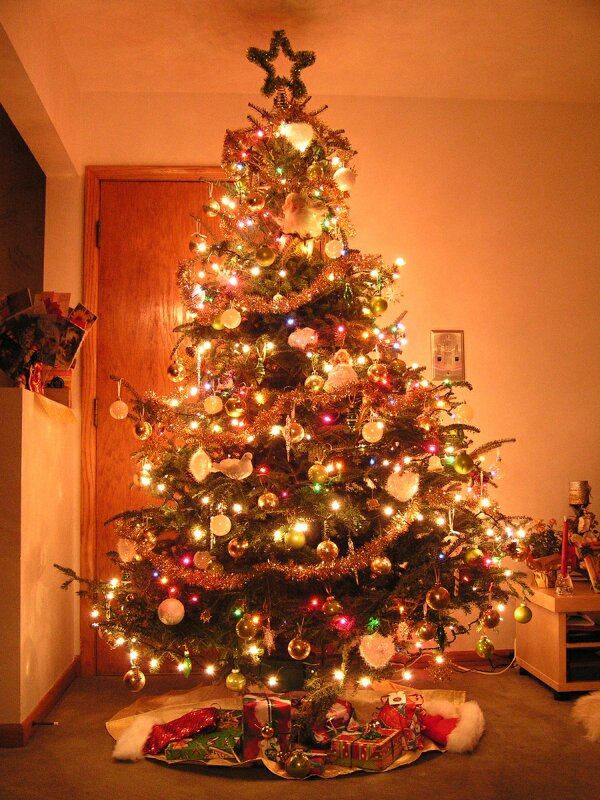 بالصور صور شجرة الميلاد لعام 2019 Christmas Tree Photos2