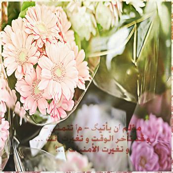 الاطمئنان PIC-860-1355749867.jpg